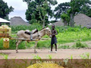 Agricoltura Guinea Bissau